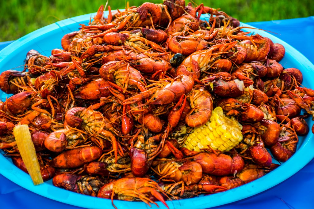 What To Know Before Moving to Louisiana